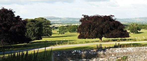 bodelwyddan-castle-surroundings