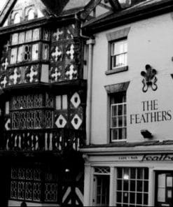 Feathers Hotel