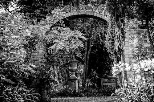ventnor-botanic-garden
